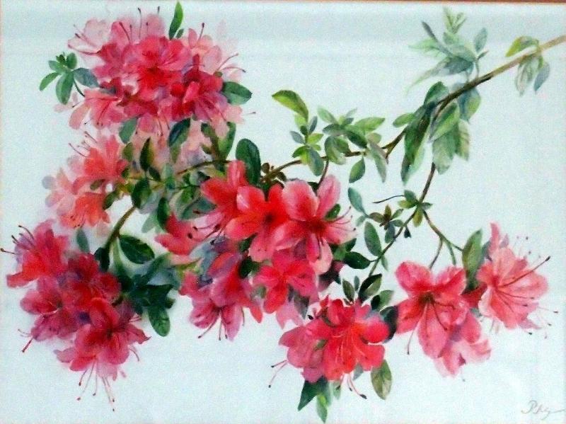 flowering azelea-44x54cm