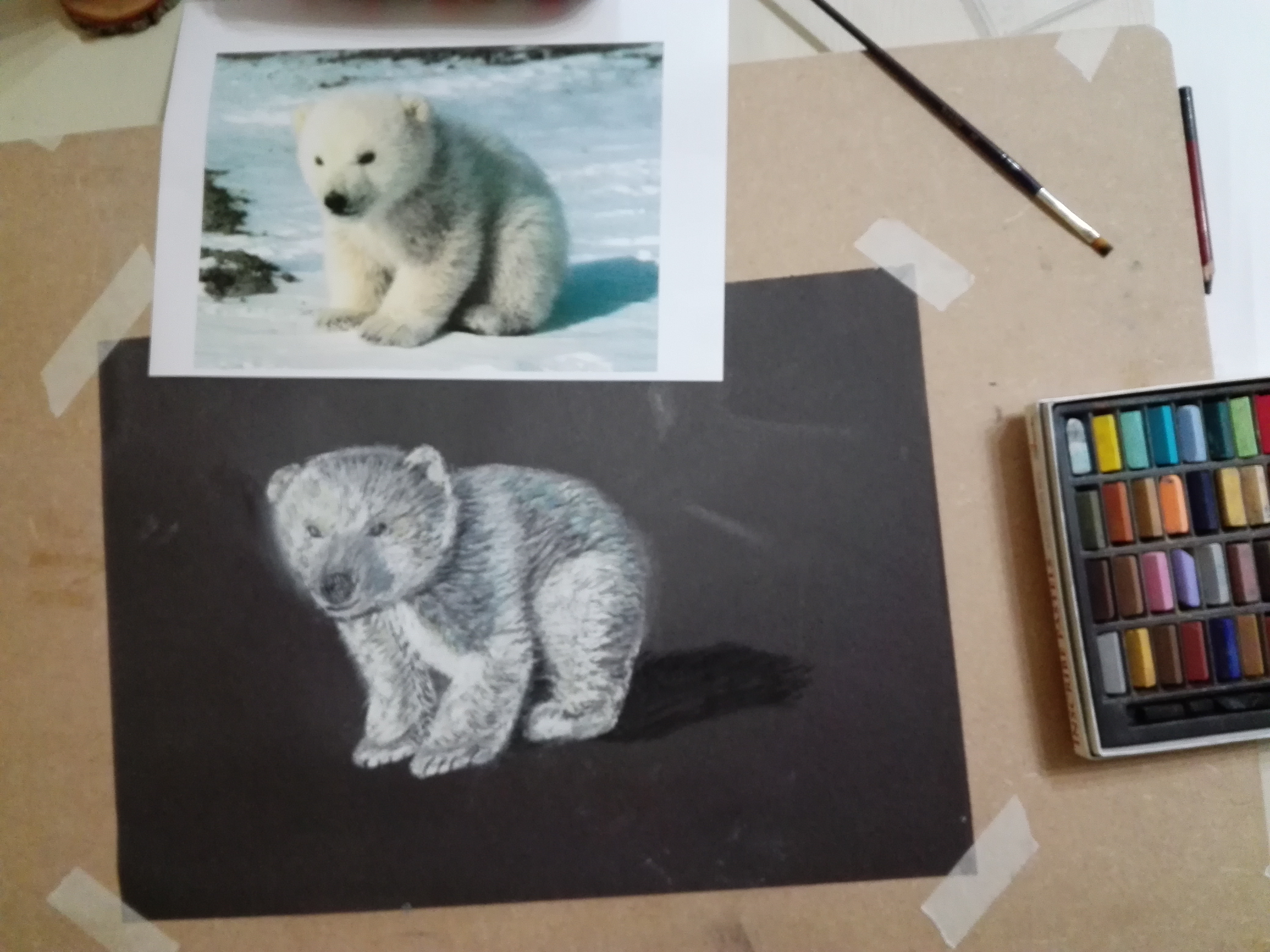 Complete beginner in Art created this soft pastel drawing of a polar bear cub