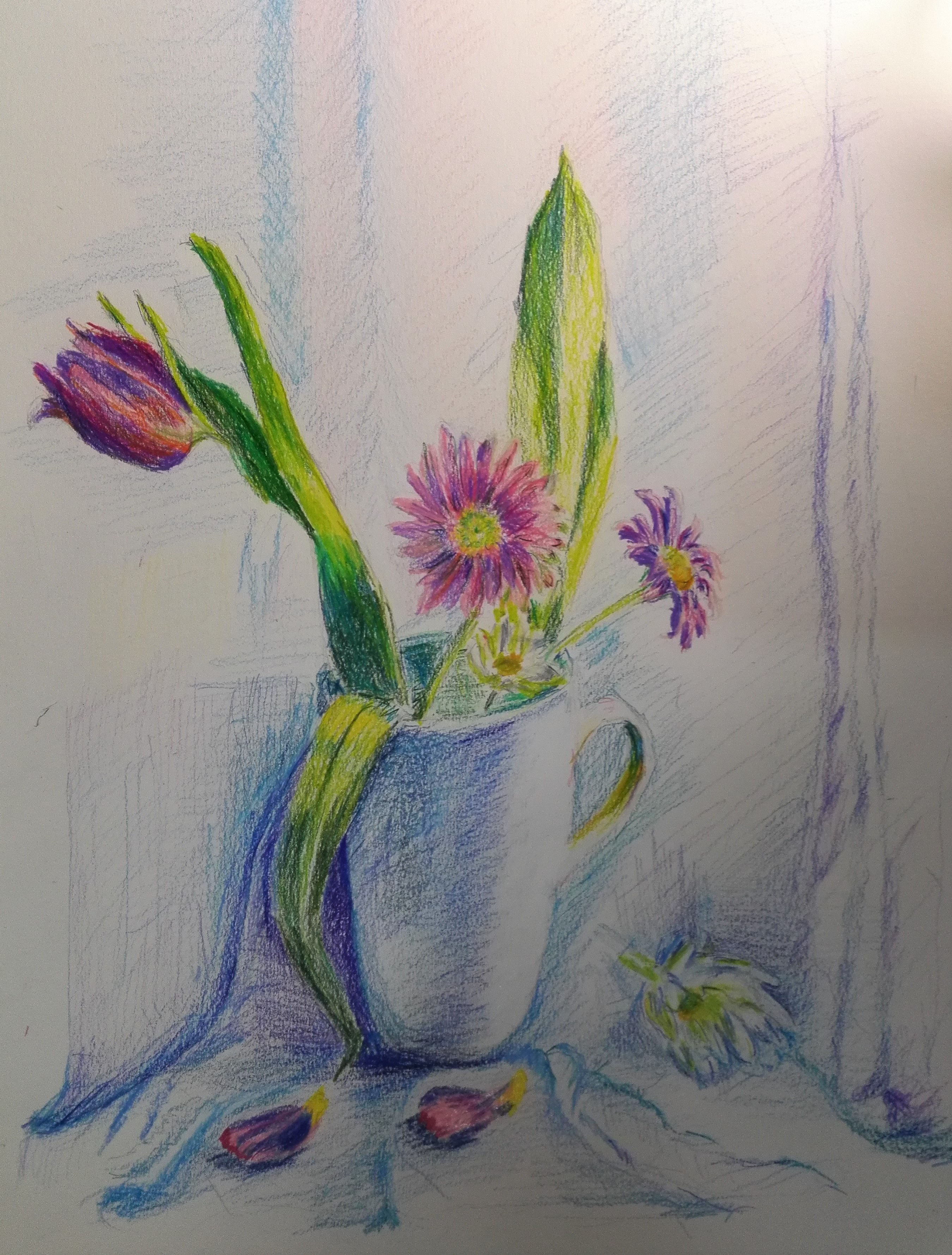Colour pencils drawing of a floral still life by a beginner student at Fundamental Art skills course in Kidderminster