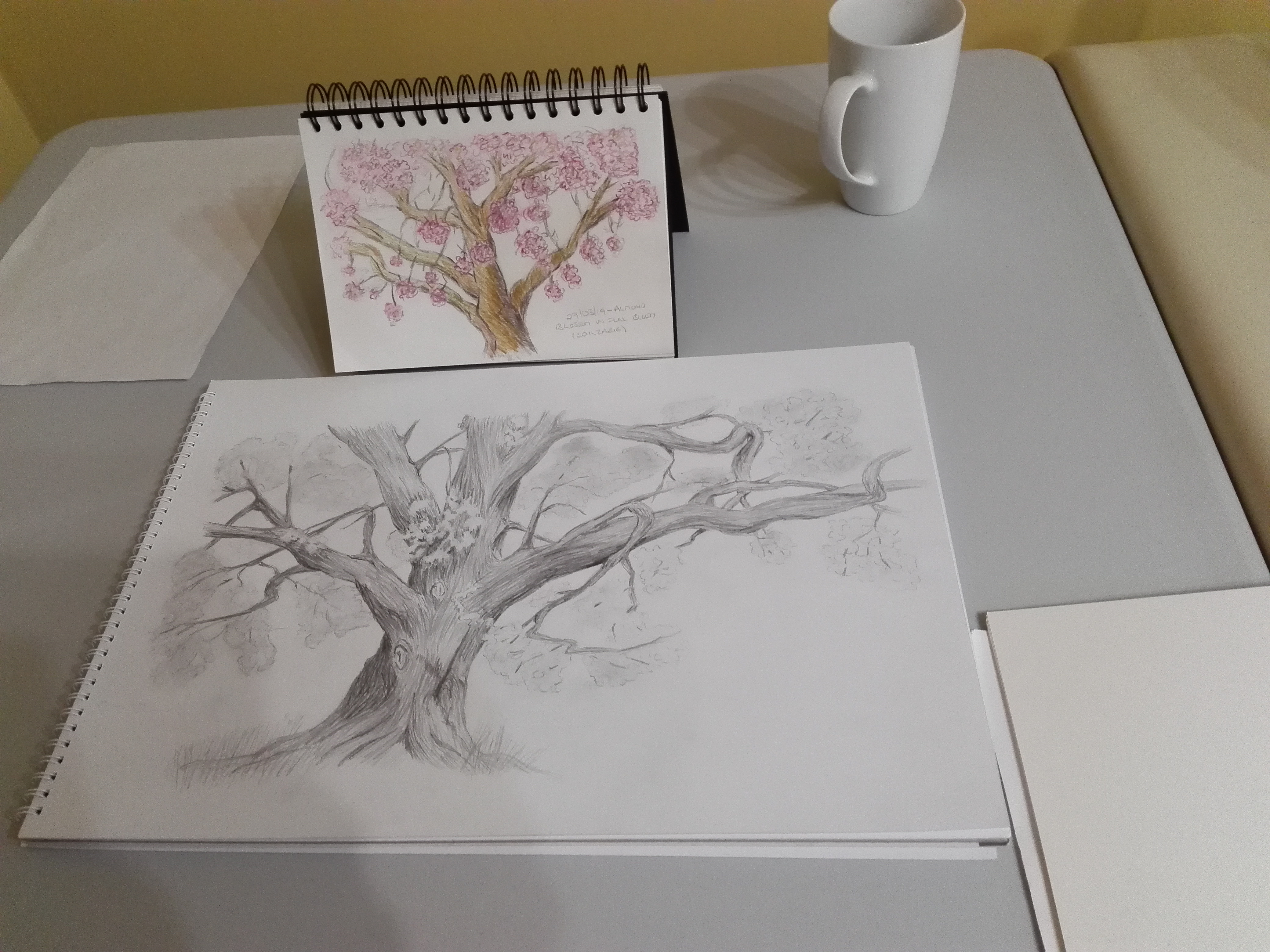 Learning how to draw trees at Magic Wool Art and Craft Studio in Kidderminster