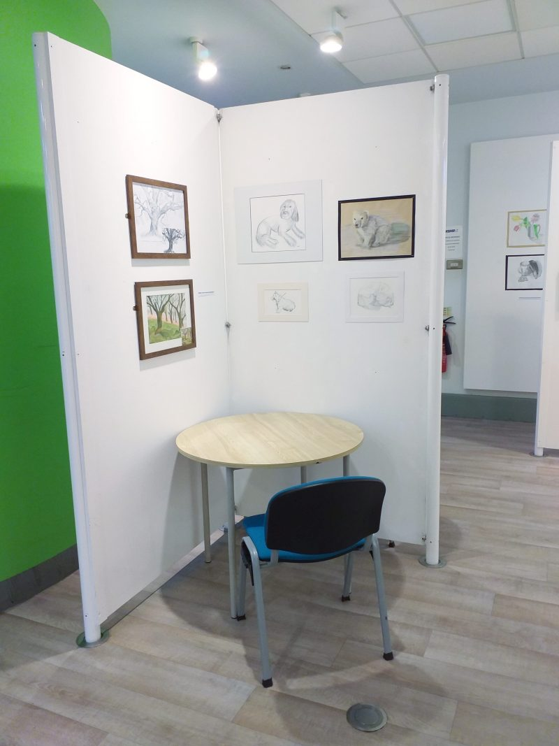 Animals and trees drawn by adult learners at Magic Wool Art and Craft Studio in Worcestershire displayed at Kidderminster Library