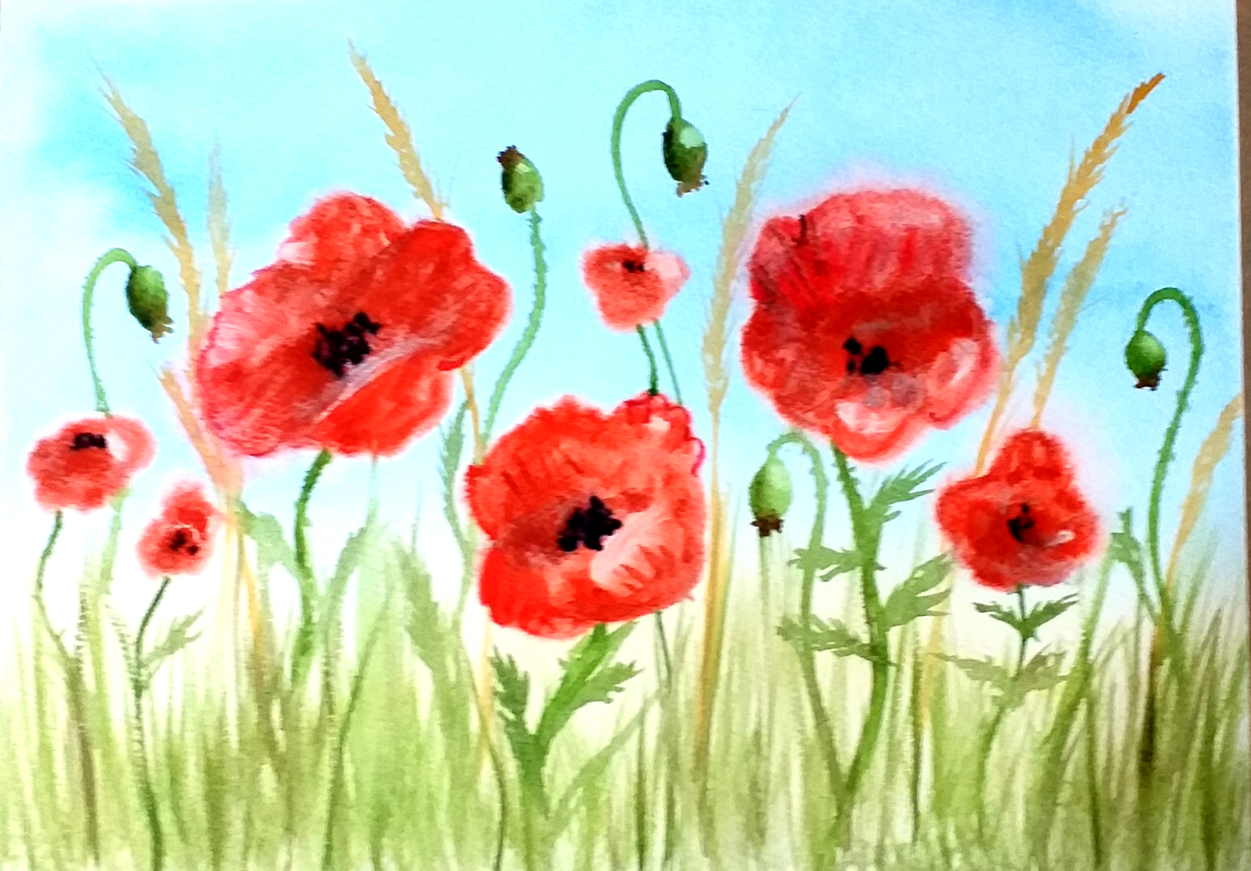 Watercolour course for absolute beginners in Kidderminster Worcestershire