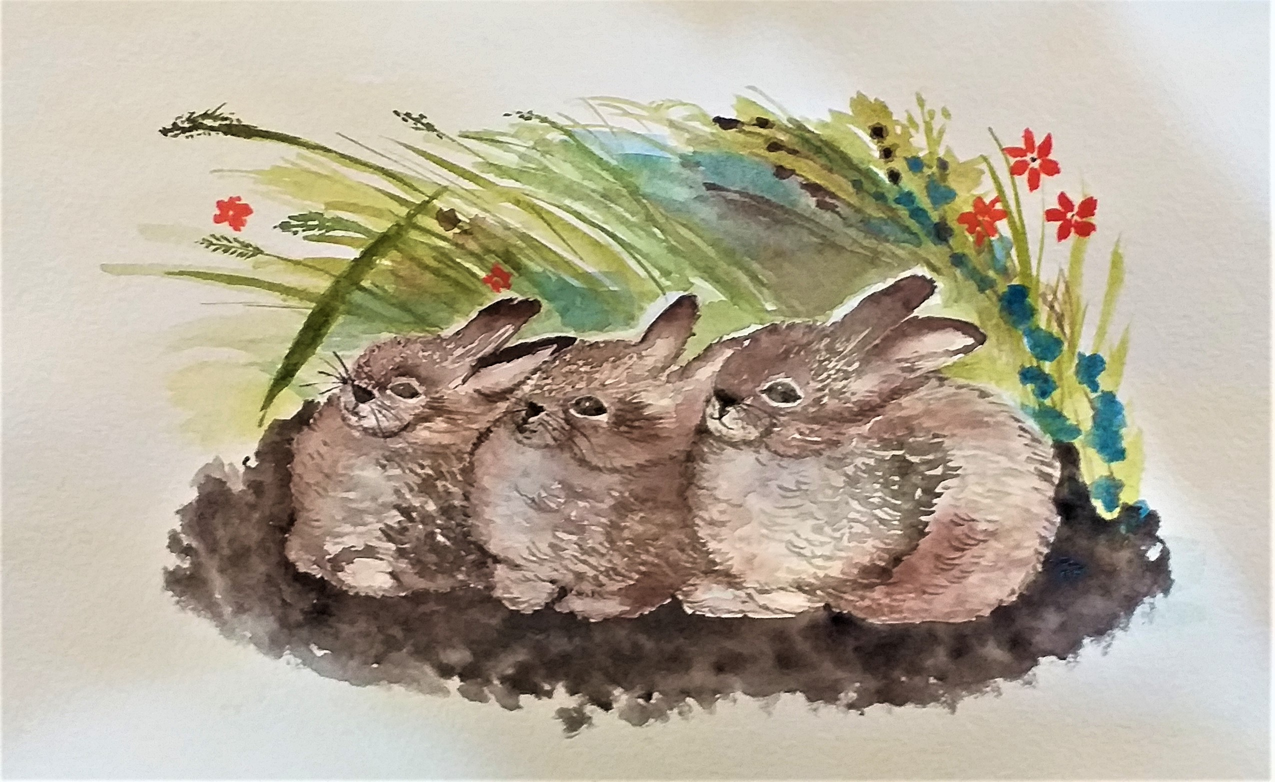 Learn to paint animals in watercolour with Raya Brown at her Watercolour art classes in Worcestershire
