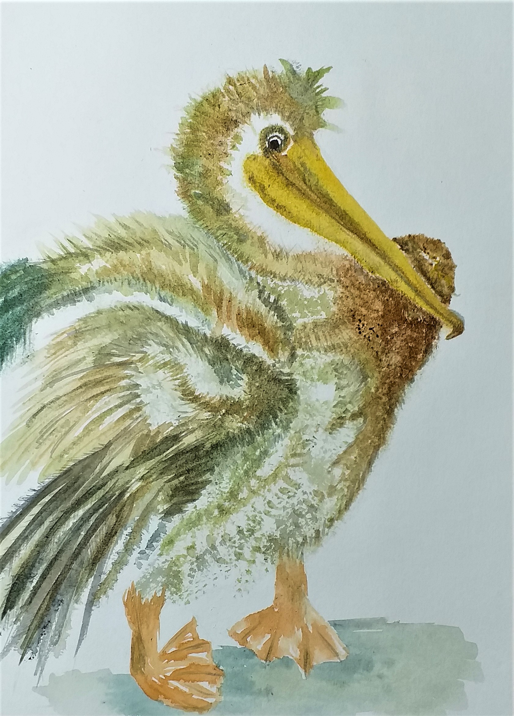 Painting birds in watercolour at Magic Wool Art and Craft Studio in Kidderminster Worcestershire