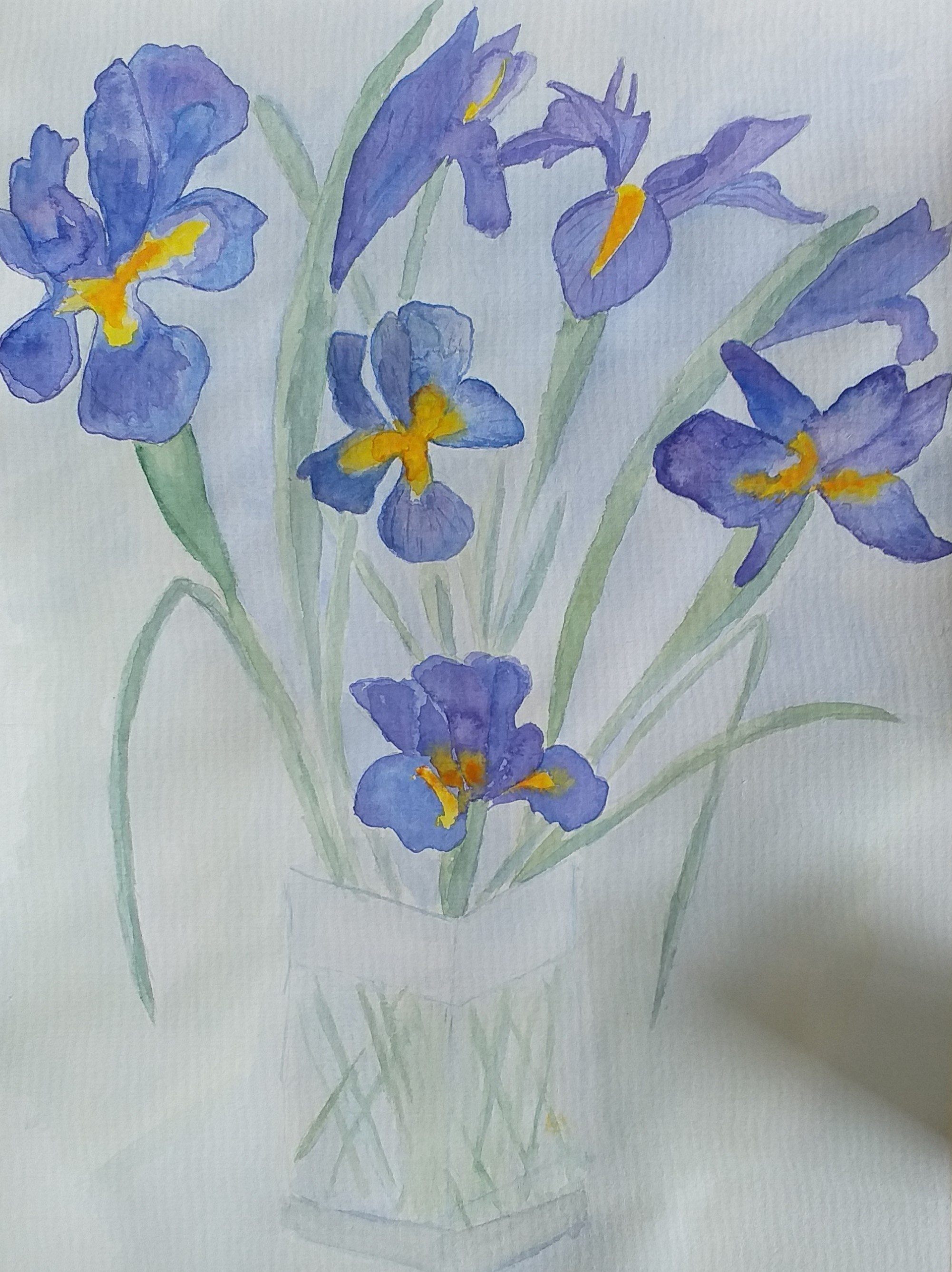 Marion's work created at Watercolour art course in Worcestershire