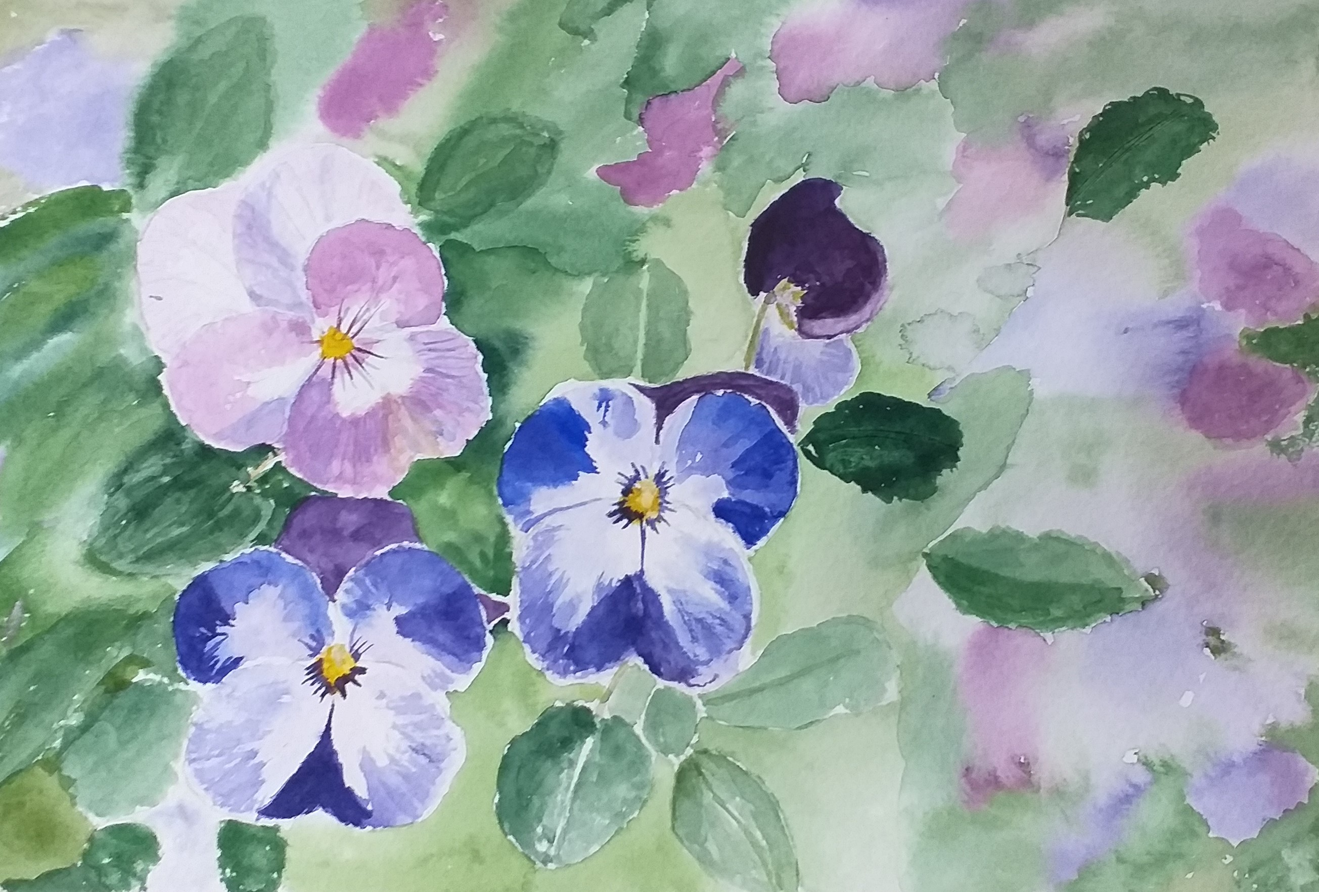Christine's watercolour of pansies created at art classes in Worcestershire