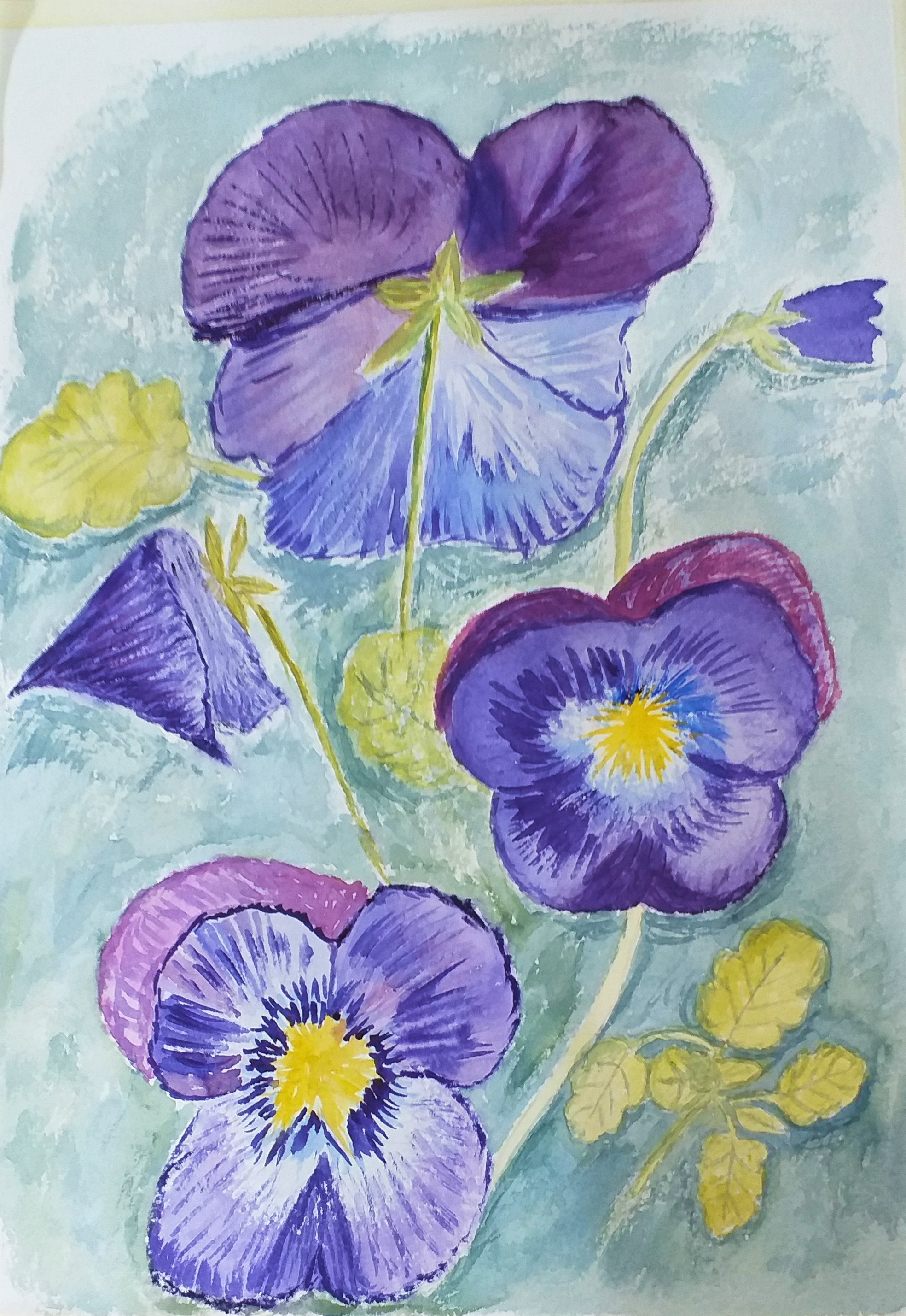Watercolour of pansies created by Debs at Watercolour classes in Worcestershire
