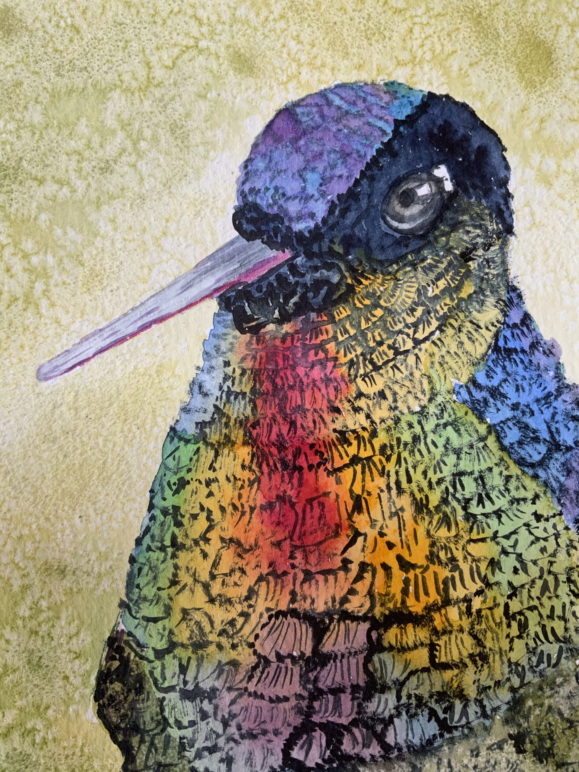 Deb's painting of a bird in watercolour and fineliner created at online art course