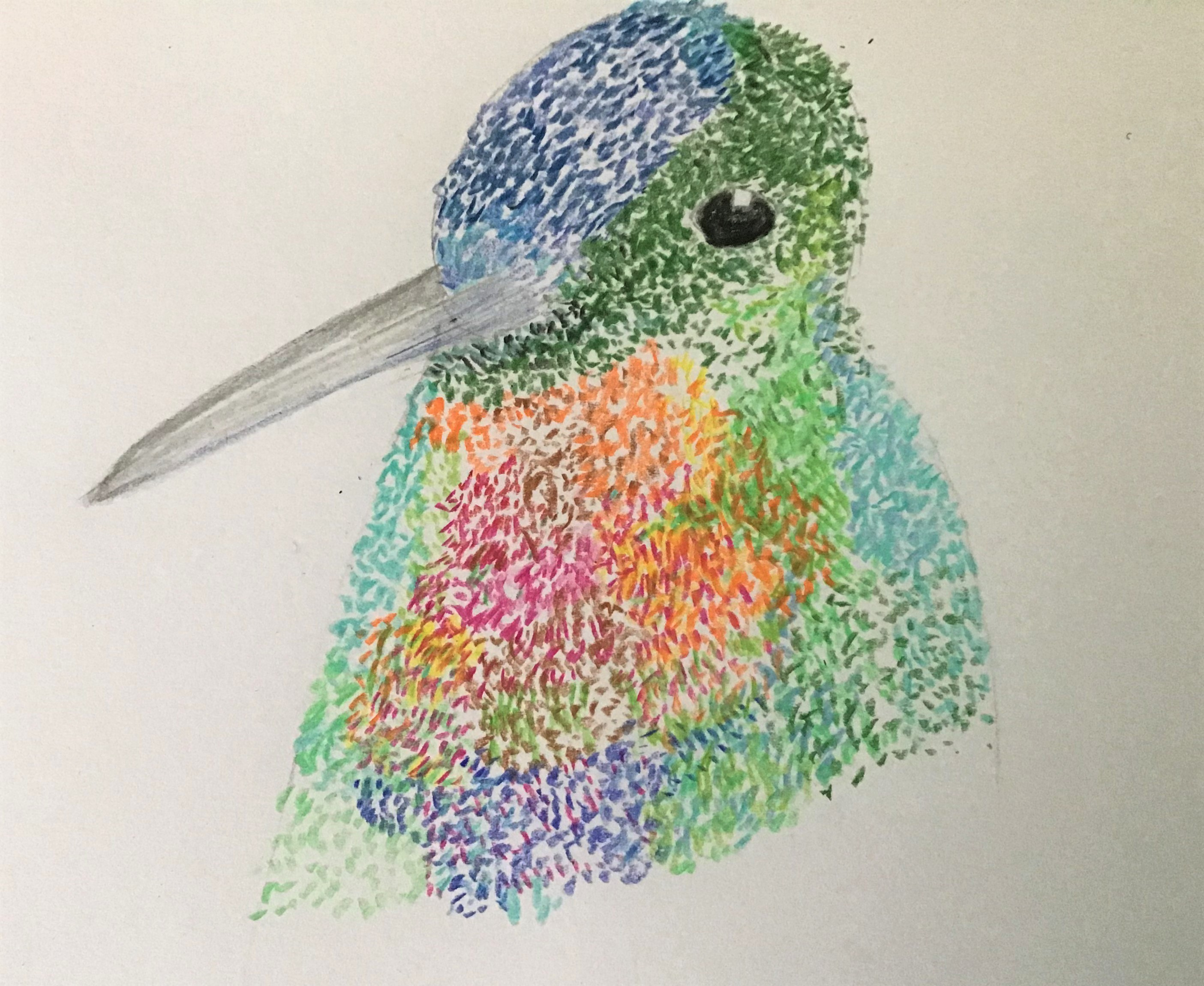 Learn how to use pastels at online art course with Raya Brown in Worcestershire