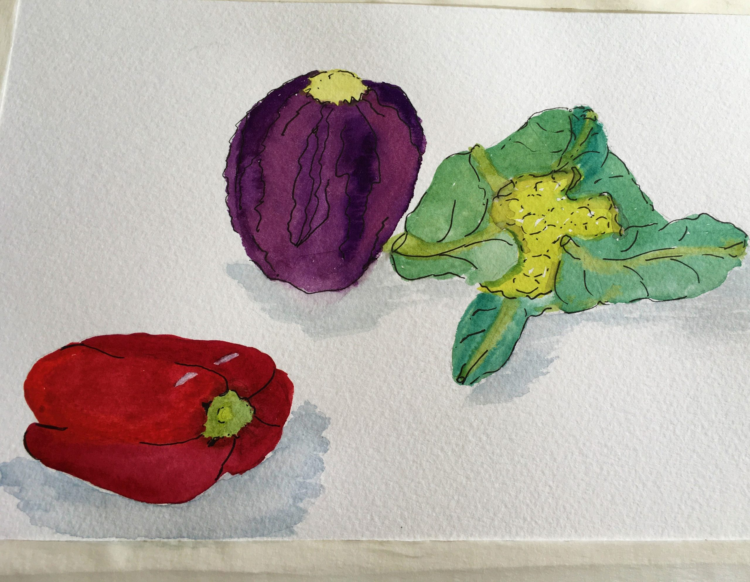Still life sketches created at online watercolour courses