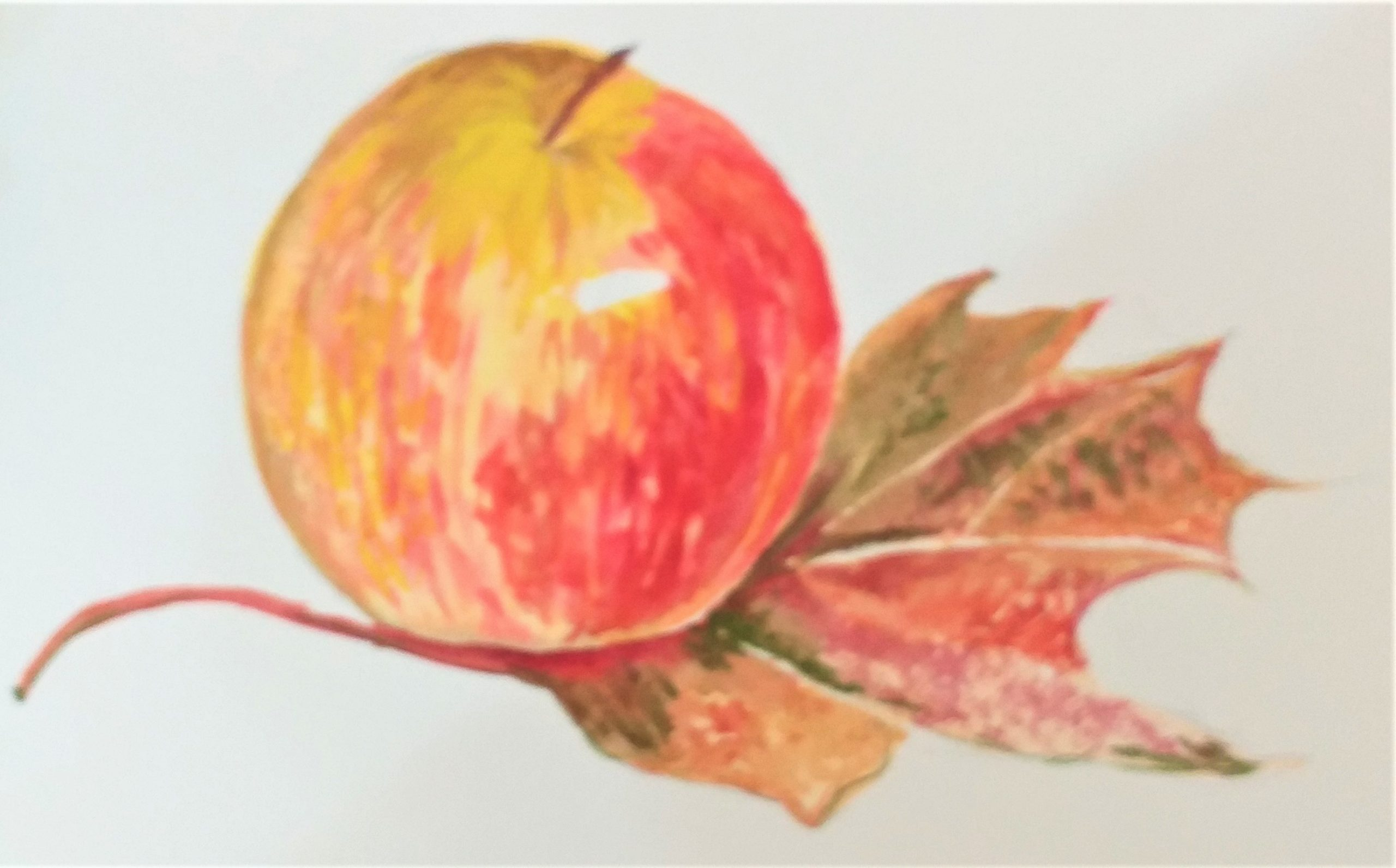 Learn to paint fruit and leaves in watercolour with Raya Brown