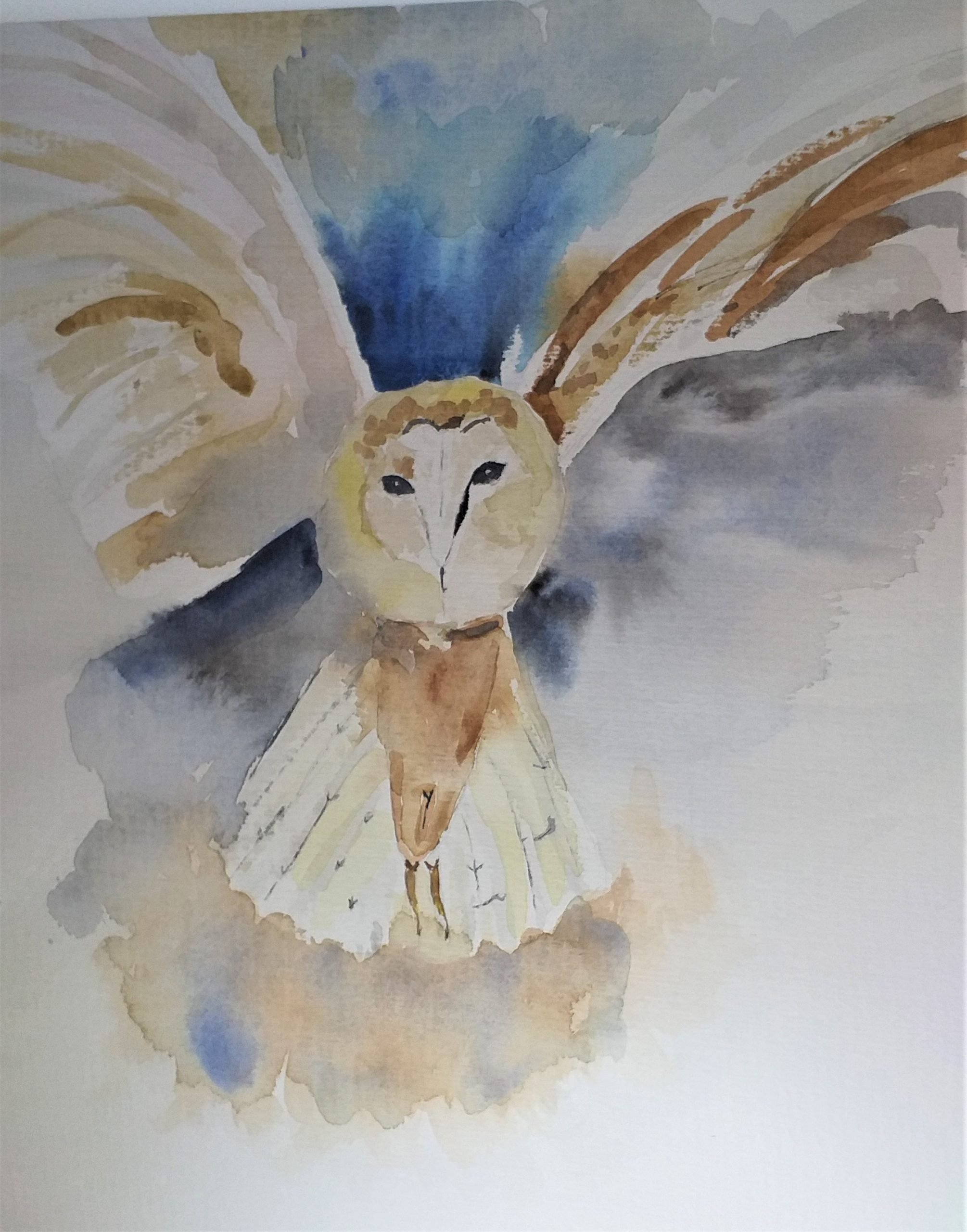 learn to paint birds at watercolour course with Raya Brown in Worcestershire