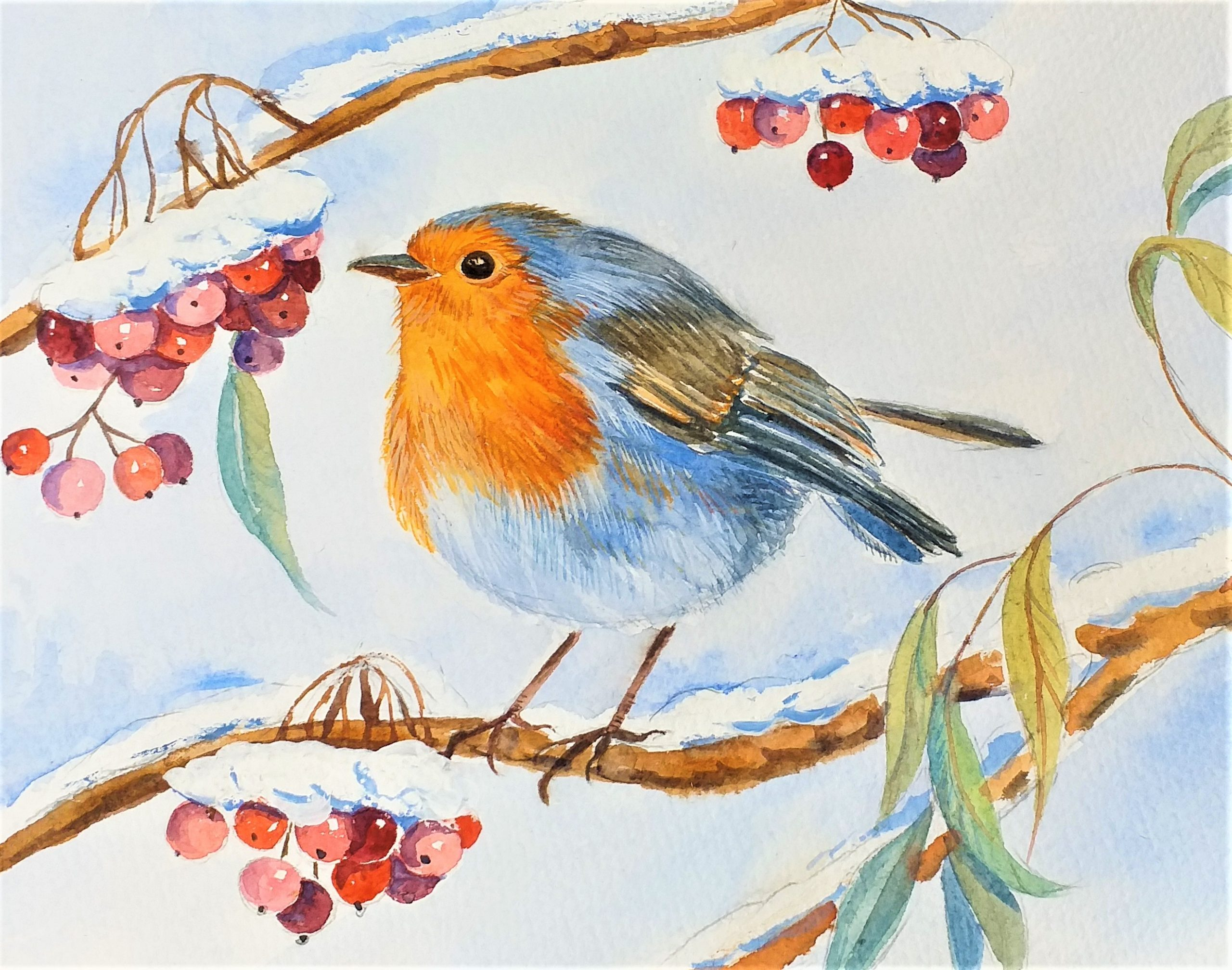 Watercolour Christmas Card with red Robin painted by artist Raya Brown