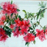 'Flowering Azalea' watercolour painting by Raya Brown-44x54cm  £100