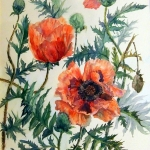 'Garden poppies' watercolour painting by artist Raya Brown-53x61cm £160