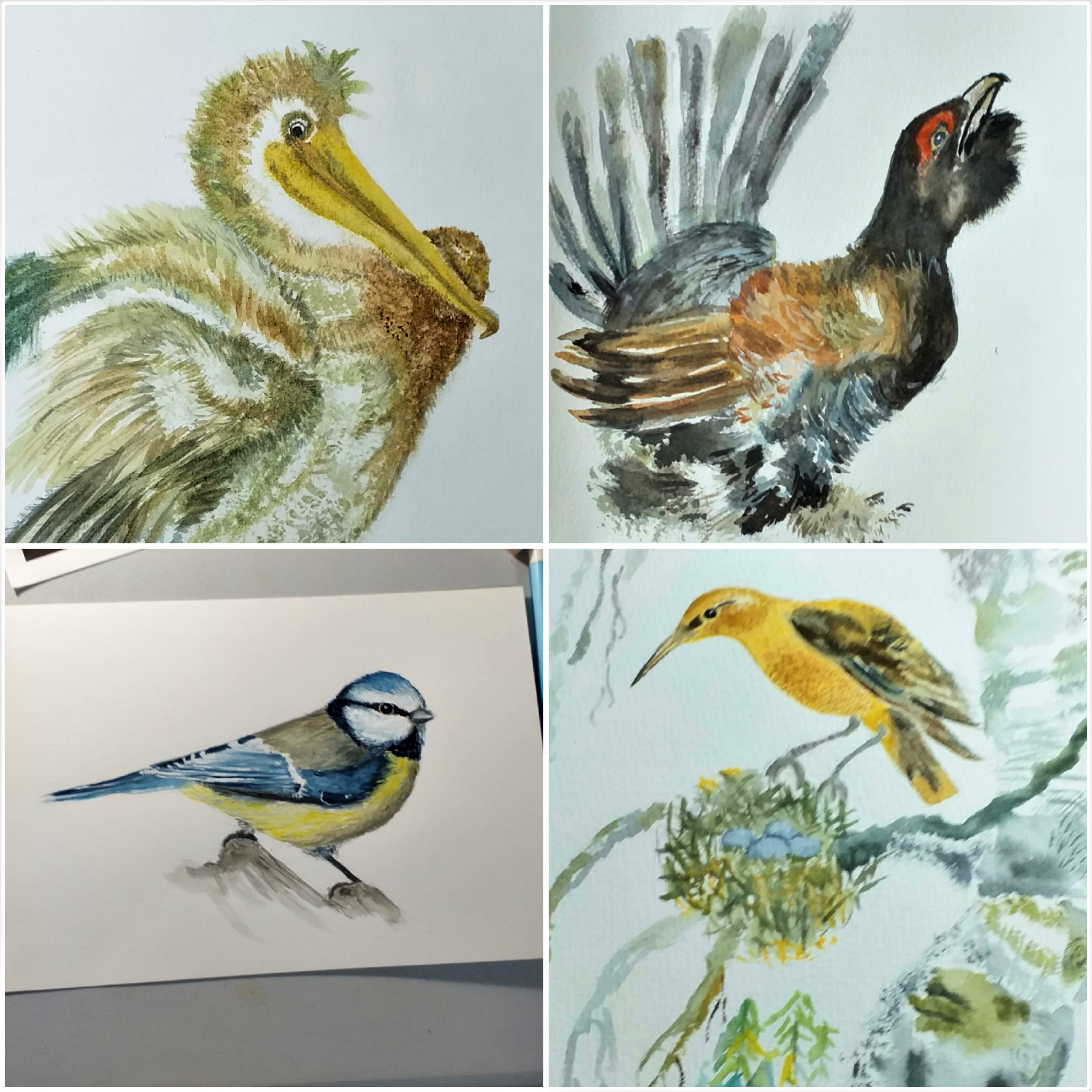 New Watercolour classes for complete beginners will start in Kidderminster Worcestershire next week