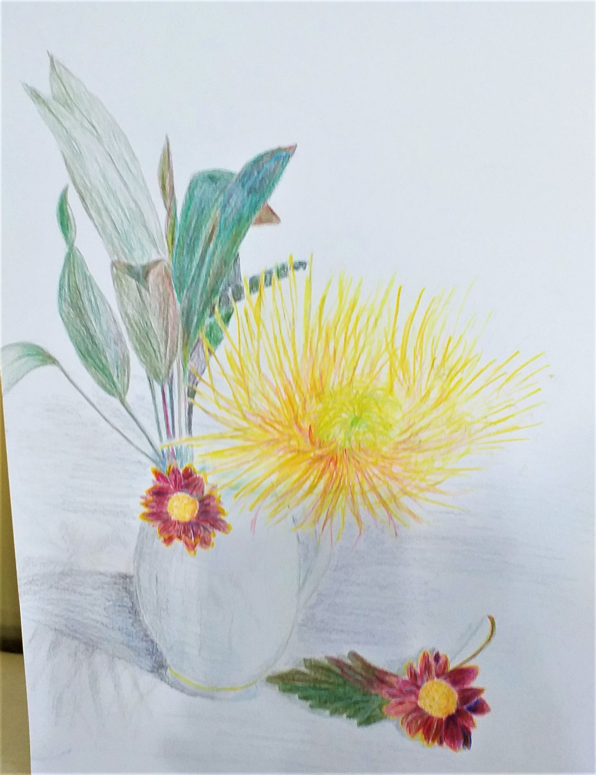 Jan's coloured pencil drawing of flowers done at Raya's art classes in Kidderminster Worcestershire