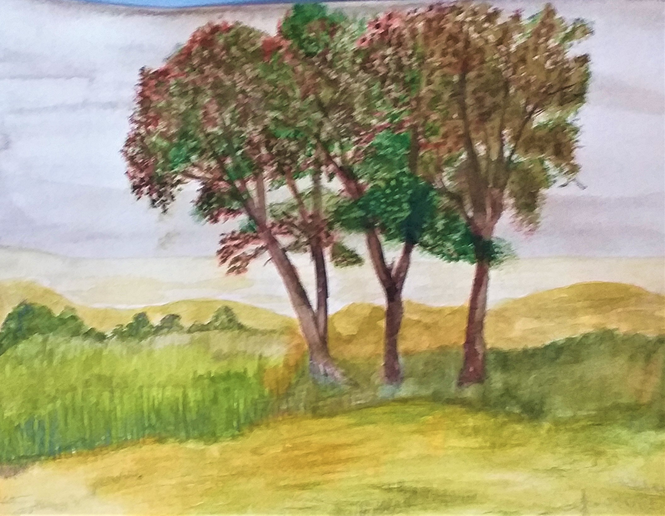 Students's work painted at Watercolour Art Course