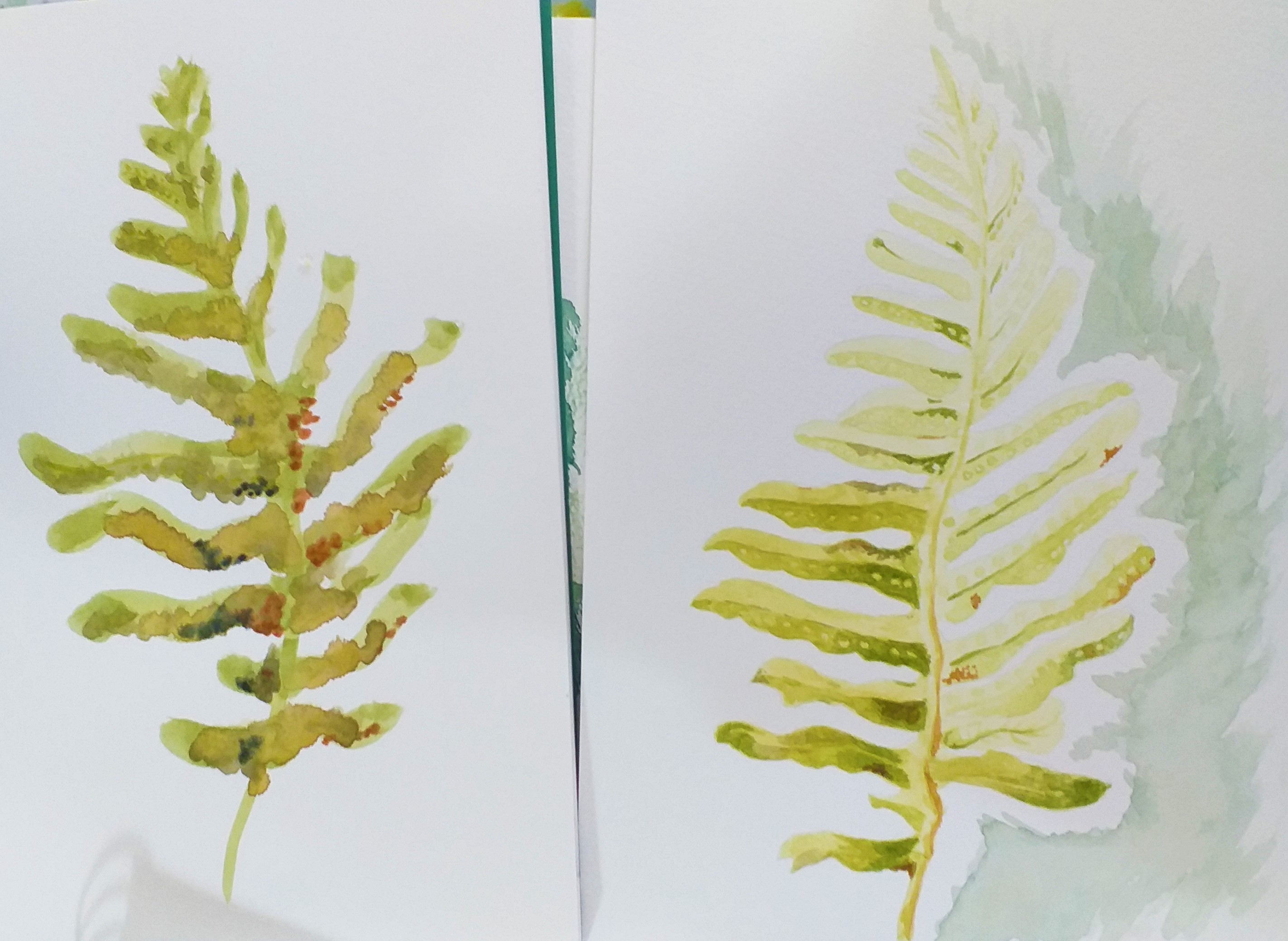 Study of leafs in watercolour by adult students in Worcestershire
