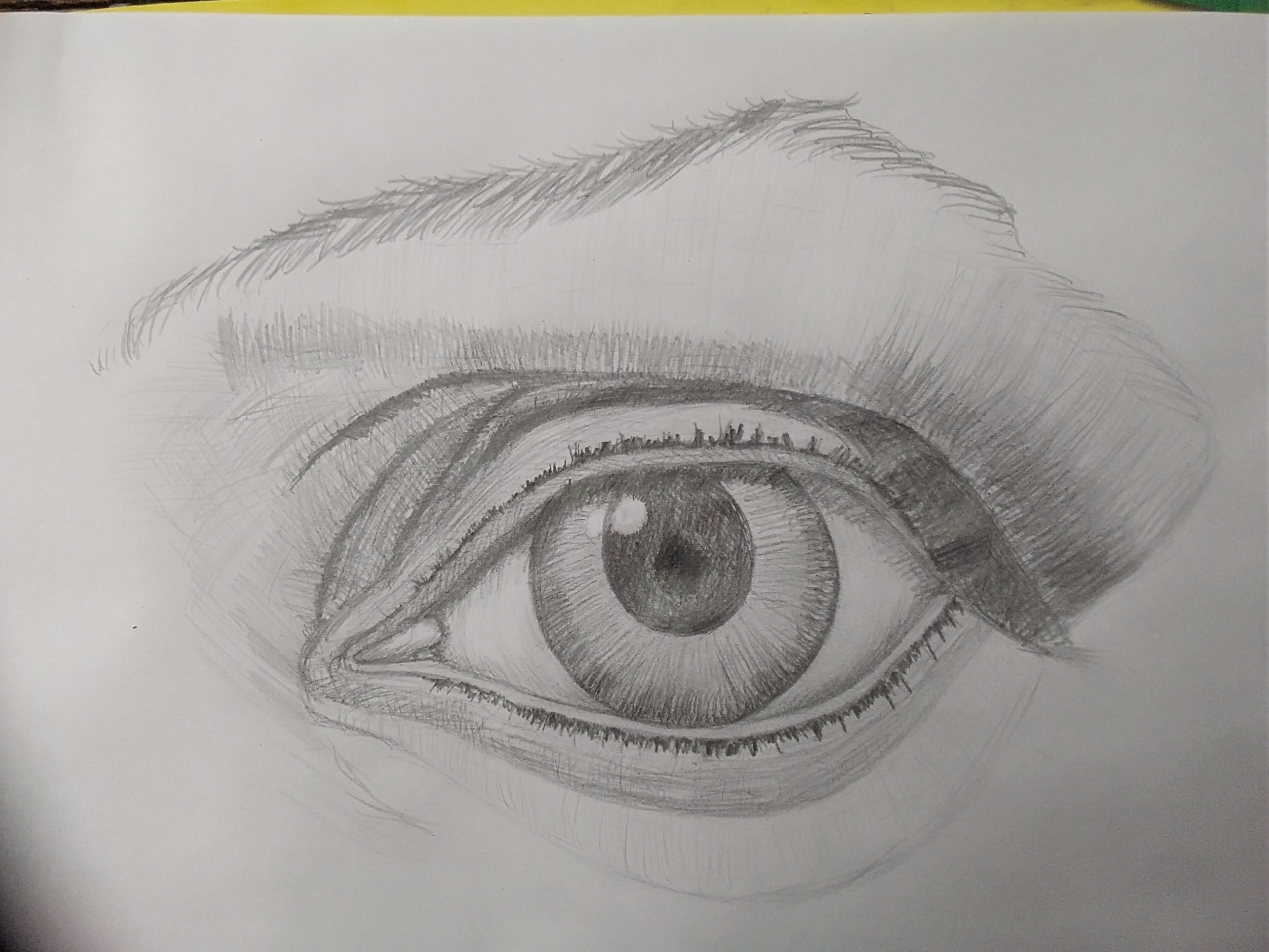 Studying how to draw portrait