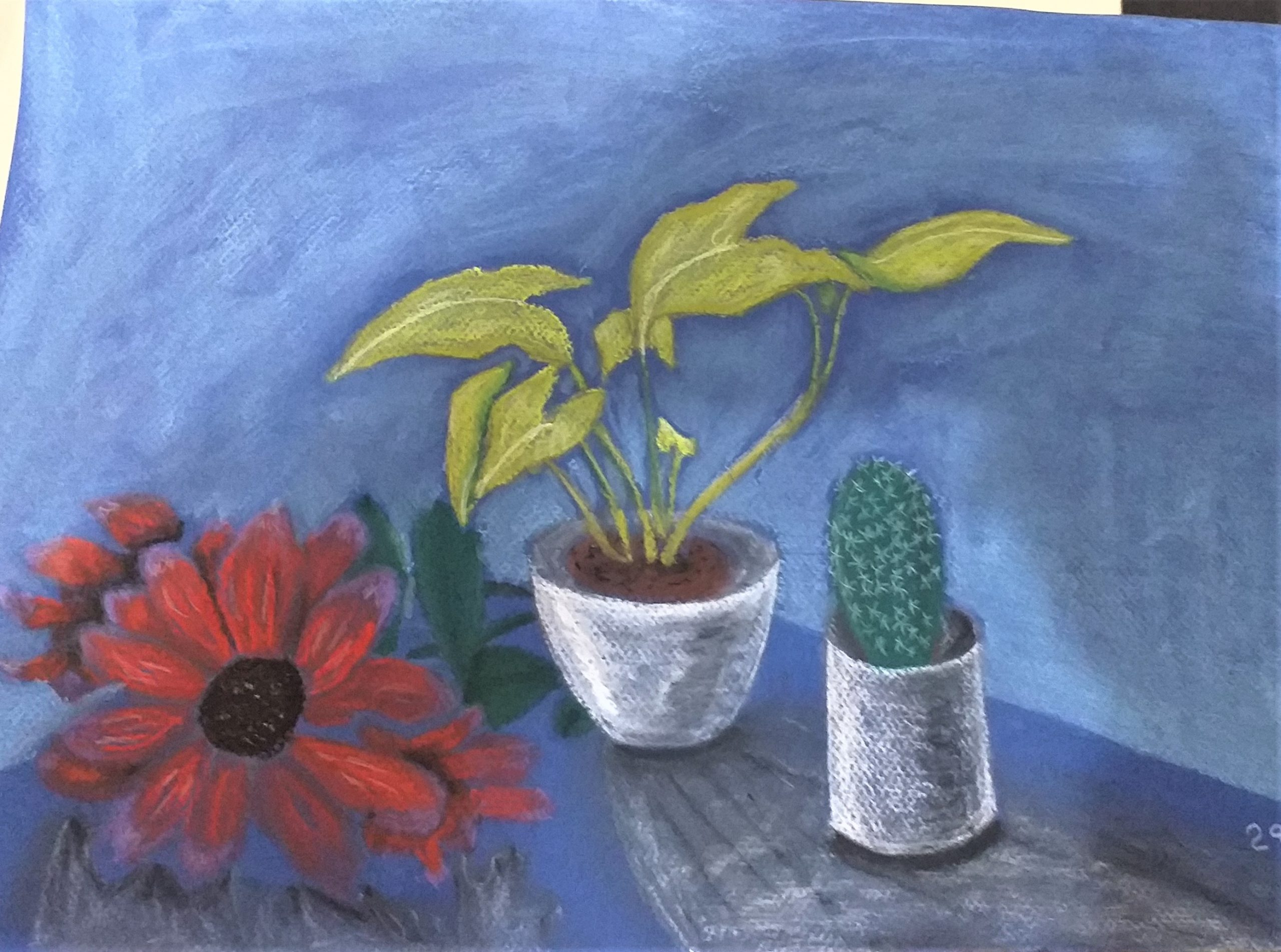 Luke's pastel drawing of still life created at art course in Kidderminster Worcestershire