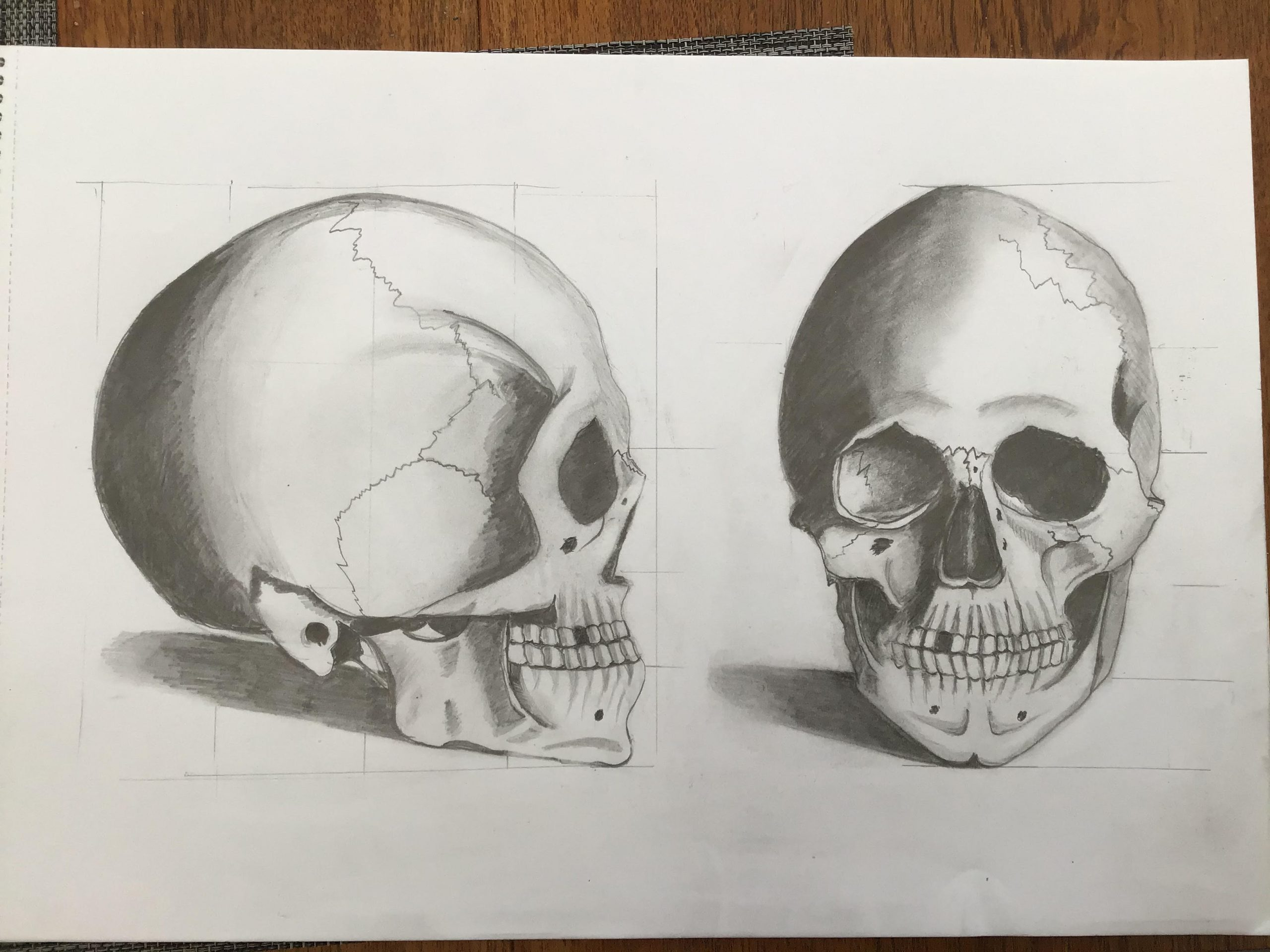 Drawing of skulls by Tony at zoom art course with artist Raya Brown
