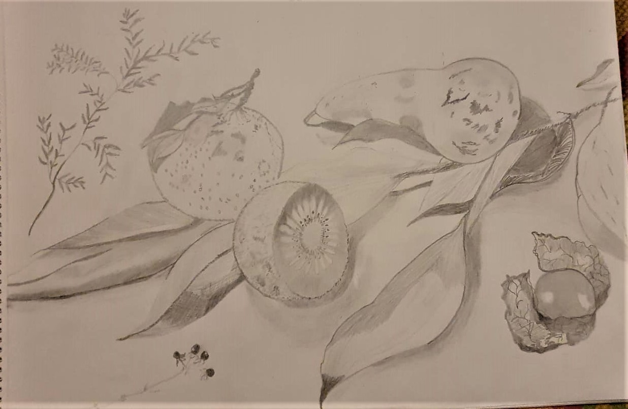Drawing of natural form by Sobi
