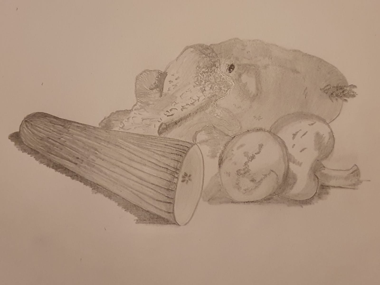 Pencil drawing of a still life produced by a student at online art course with live tuition