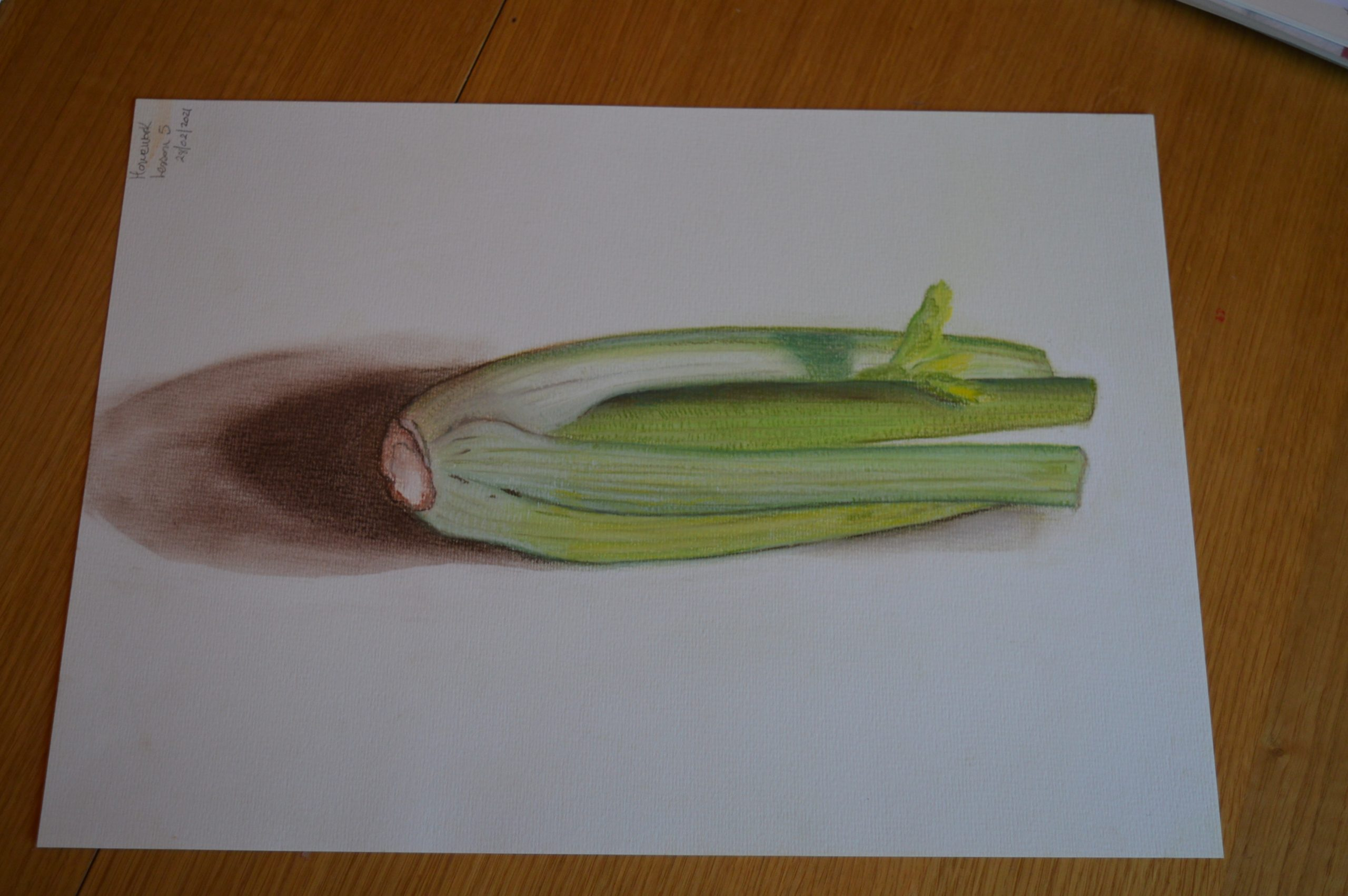 Learn to use chalk pastels at the best online art course for complete beginners with Raya Brown