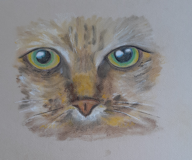 Learn how to use chalk pastels at online art classes with Worcestershire artist Raya Brown