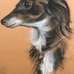Learn to draw animals at online interactive art classes with Worcestershire artist Raya Brown