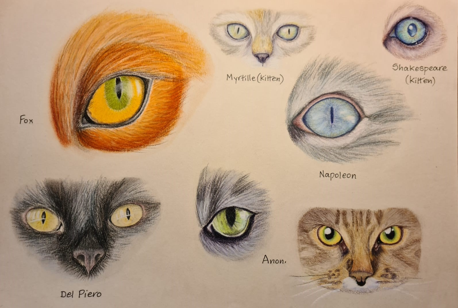 Learn how to draw animals at online art course via zoom with a professional art tutor and artist