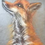 Learn how to paint animals with pastels at online art classes in Worcestershire with artist Raya Brown