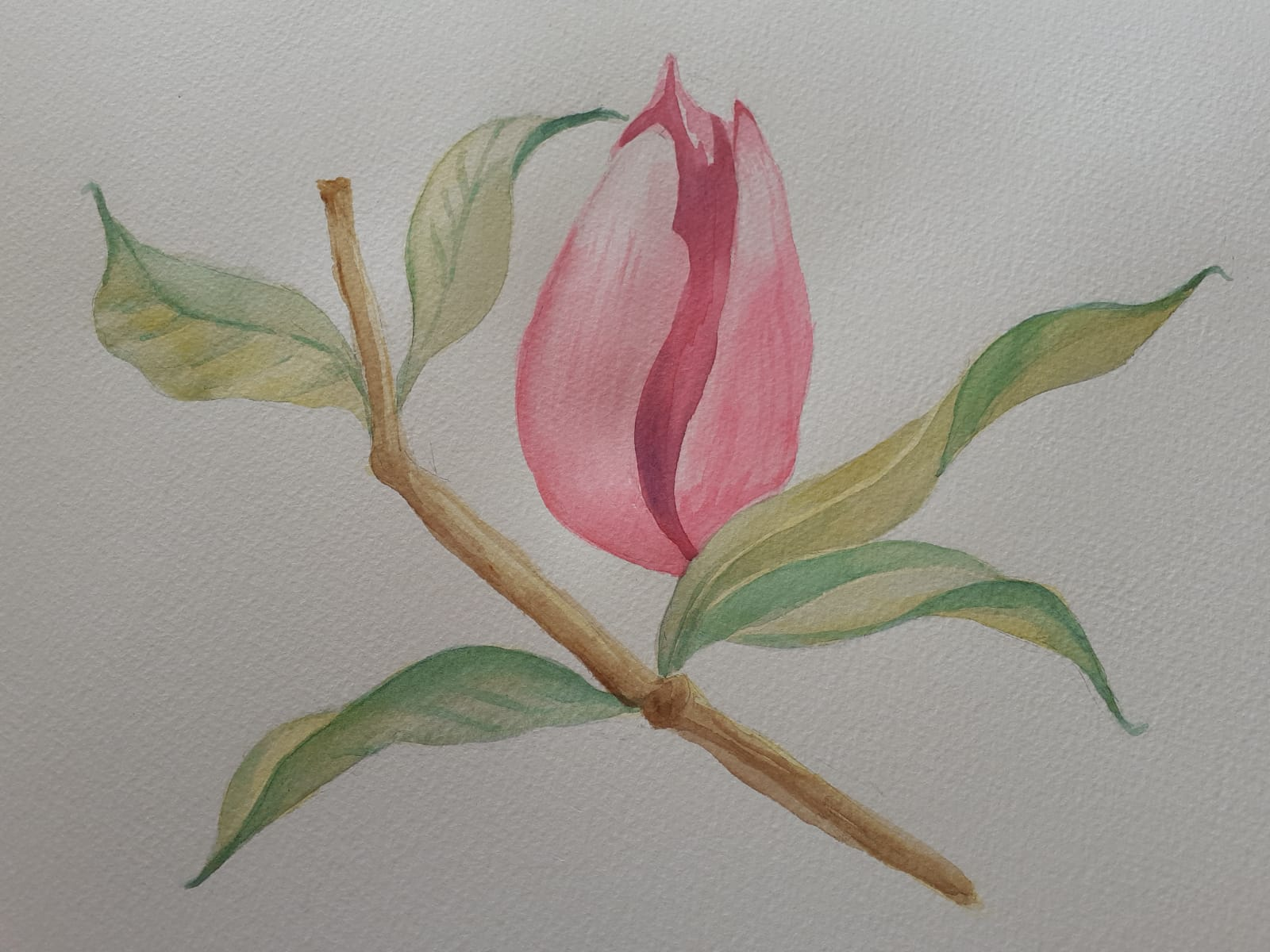 Watercolour painting by Linda painted at online art classes