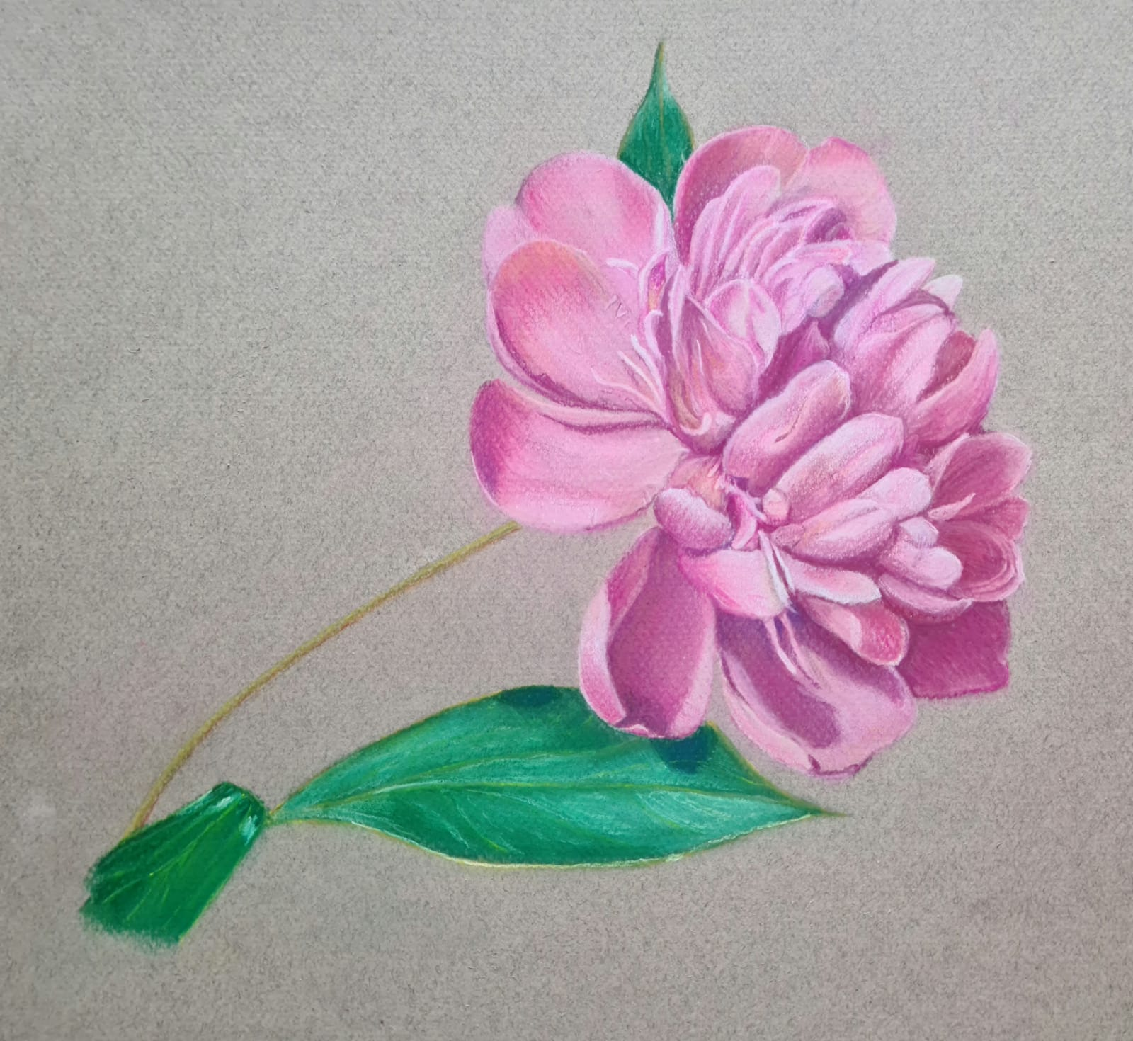 Introduction to Soft pastels online art zoom course with Worcestershire Artist Raya Brown