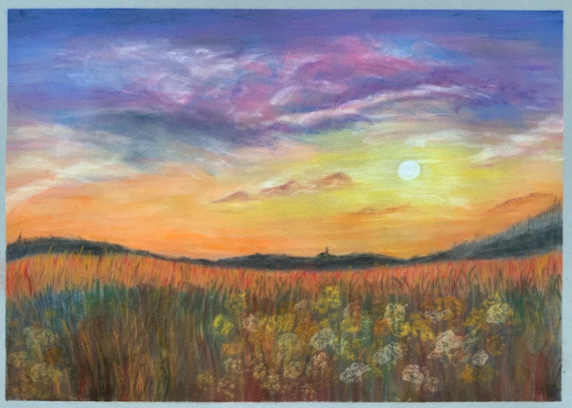 Online Soft Pastel course with live tuition by Worcestershire Artist Raya Brown